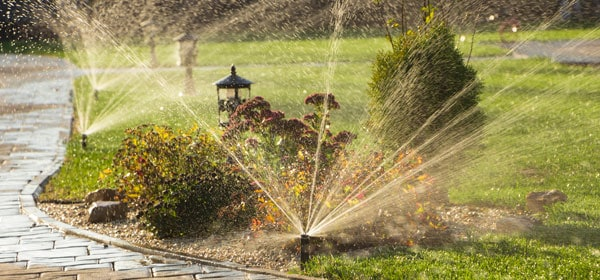 automated in-ground home water sprinkler