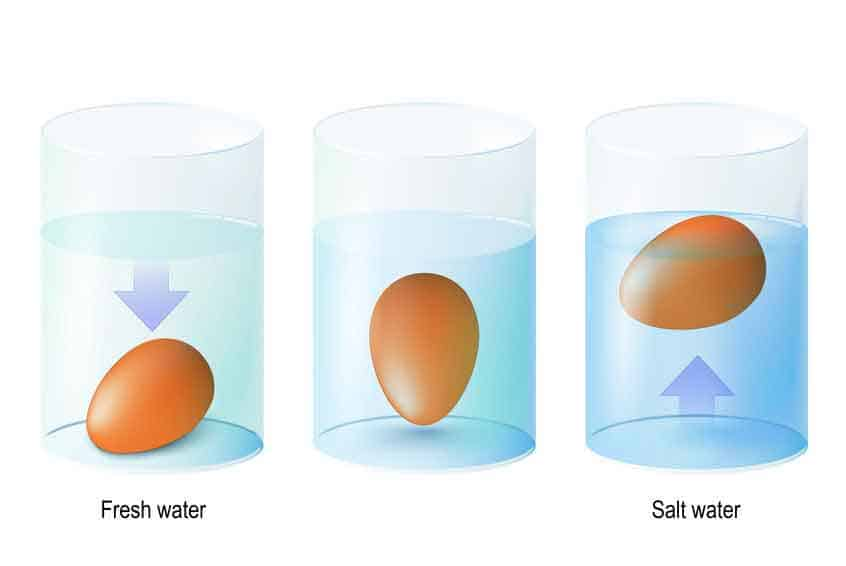 Use salt to make objects float